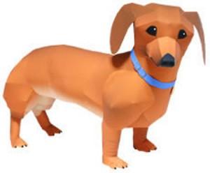 dachshund-300x248